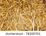 Bale Golden Straw Texture...
