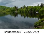 Green pine trees with beautiful reflections in the lake under overcast sky