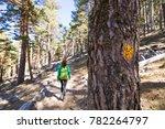 woman walking and yellow dot... | Shutterstock . vector #782264797
