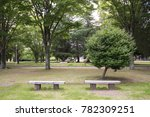 stone chair in garden  with a...   Shutterstock . vector #782309251