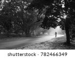 a lone cyclist in morning mist.  | Shutterstock . vector #782466349