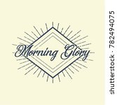 morning glory fancy vintage... | Shutterstock .eps vector #782494075