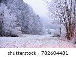 winter scene in tuhinj valley ... | Shutterstock . vector #782604481