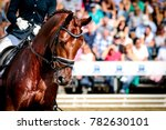 horse in competition at a... | Shutterstock . vector #782630101