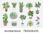 home indoor plants vector hand... | Shutterstock .eps vector #782636101