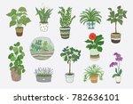 home indoor plants vector hand... | Shutterstock .eps vector #782636101