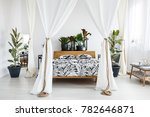 plants on wooden bedhead of bed ... | Shutterstock . vector #782646871