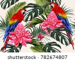 beautiful seamless vector... | Shutterstock .eps vector #782674807
