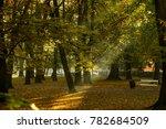 autumn in the city park | Shutterstock . vector #782684509