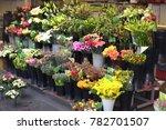 Flower Stall  Flower Sale