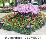 modern garden design   Shutterstock . vector #782740774