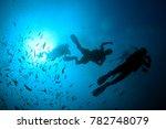 scuba diving on underwater reef | Shutterstock . vector #782748079
