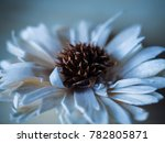 artificial decorating flower... | Shutterstock . vector #782805871
