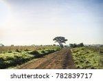 african landscape   dirt road... | Shutterstock . vector #782839717