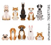 funny dogs illustrations in... | Shutterstock . vector #782877181