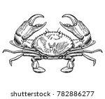 Hand Drawn Crab Sketch Vector...