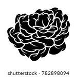 flower rose  black and white.... | Shutterstock .eps vector #782898094