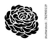 flower rose  black and white.... | Shutterstock .eps vector #782900119
