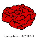 red rose isolated on white... | Shutterstock .eps vector #782900671