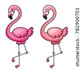 flamingo. vector illustration... | Shutterstock .eps vector #782900701