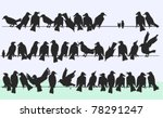 ravens and sparrows | Shutterstock .eps vector #78291247