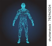 wire frame human full body in... | Shutterstock .eps vector #782962024