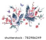 watercolor nature card with...   Shutterstock . vector #782986249