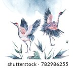 vintage watercolor nature card... | Shutterstock . vector #782986255