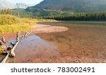 shore of fishercap lake with... | Shutterstock . vector #783002491