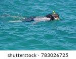 aruba   dec 18  2017  ... | Shutterstock . vector #783026725