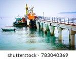 tioman island malaysia  12... | Shutterstock . vector #783040369