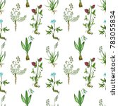 seamless pattern with... | Shutterstock . vector #783055834
