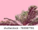 Palm Tree Retro Toned. Vintage...