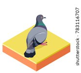Isometric Pigeon On  The Squar...