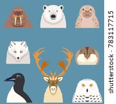 set of flat arctic animal icons | Shutterstock . vector #783117715