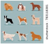 dog flat icons set | Shutterstock . vector #783118381
