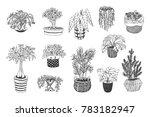home plants vector cartoon hand ... | Shutterstock .eps vector #783182947