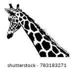 giraffe head  vector... | Shutterstock .eps vector #783183271