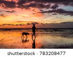 Stock photo a silhouetted person walking their dog on the beach during a beautiful sunset at seminyak bali 783208477