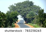 an indian highway pitch road... | Shutterstock . vector #783258265