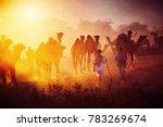 pushkar. rajasthan. india  ... | Shutterstock . vector #783269674