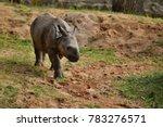 indian rhinoceros in the... | Shutterstock . vector #783276571
