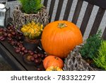 Wooden Bench With Pumpkins And...