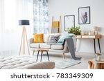 gray blanket on beige couch in... | Shutterstock . vector #783349309