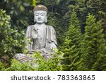 a large buddha statue sits on a ... | Shutterstock . vector #783363865