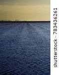 landscape of marsh full of... | Shutterstock . vector #783436261