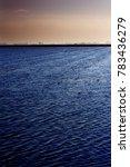 landscape of marsh full of... | Shutterstock . vector #783436279