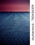landscape of marsh full of... | Shutterstock . vector #783436309