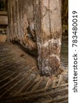 Wet Rot On Wooden Stalls In...