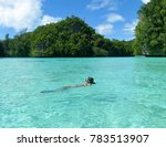 swimming in a clear shallow... | Shutterstock . vector #783513907